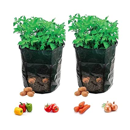 Amazon.com: fangfang 7 galones bolsas de crecimiento de ...