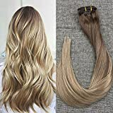 Full Shine 22 inch 10 Pcs Clip in Balayage Extensions Remy Human Hair Color #10 Fading to #14 With Color #14 Blonde Highlighted Thick Clip in Remy Hair Extensions 140gram