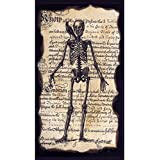 Gifted Living 4NG4824 Enchanted Halloween Skeleton Paper Guest Towels