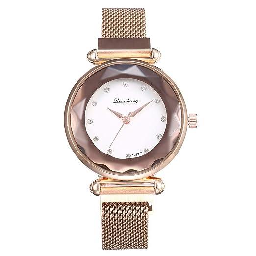 DAYLIN Relojes Mujer Reloj de Pulsera Analógico de Cuarzo de Acero Inoxidable para Mujer Chica Wrist Watch for Women Girl Regalos: Amazon.es: Relojes