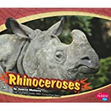 Rhinoceroses (Asian Animals)