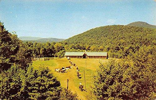 Lake Luzerne New York Painted Pony Ranch Birdseye View Vintage Postcard ()