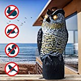 Livin' Well New Improved Owl Scarecrow Realistic – Motion Activated Solar Powered Owl Decoy w/Flashing Eyes & Scary Sound – Garden Owl Animal Repellent Deters Birds, Pests & Squirrels