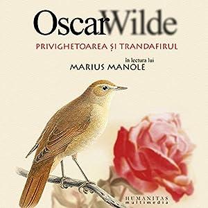 Privighetoarea și trandafirul Audiobook
