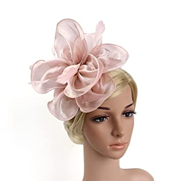79c4720a751f9 FRCOLOR Fascinator Hats for Women Feather Cocktail Party Hats Bridal Kentucky  Derby Headband Headdress (Nude