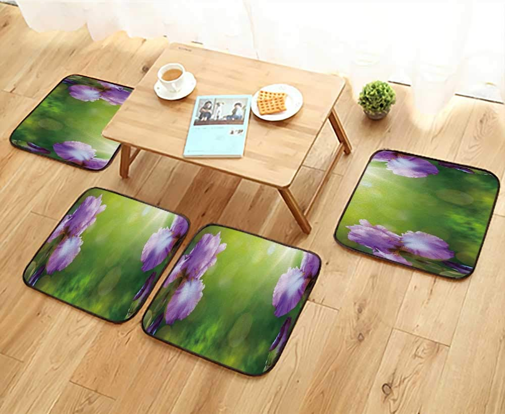 Jiahonghome Universal Chair Cushions Art Summer or Spring Beautiful Garden Background with iris Flowers Personalized Durable W15.5 x L15.5/4PCS Set