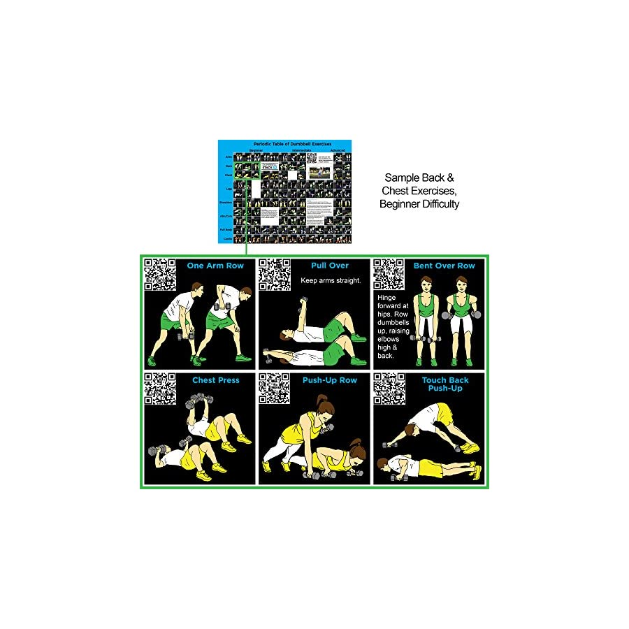Stack 52 Dumbbell Exercise Poster (Large): Periodic Table Dumbbell Exercises. Video Instructions Included Training Adjustable Free Weight Sets & Home Gym Fitness Full Body Workouts.