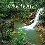 Oklahoma Wild & Scenic 2020 7 x 7 Inch Monthly Mini Wall Calendar, USA United States of America Southwest State Nature