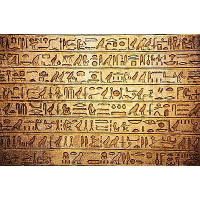 Hieroglyph Translator Ring Silver Size 12: Clothing
