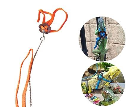 Vivian Adjustable Lizard Reptile Pet Harness Leash For Outdoor Walk