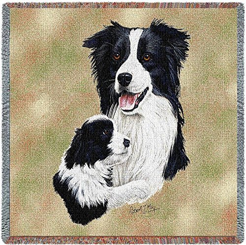Border Collie Portrait (Pure Country 1202-LS Border Collie and Pup Pet Blanket, Canine on Beige Background, 54 by 54-Inch)