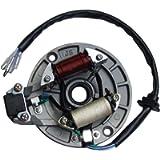 shamofeng 2 Coil Magneto Stator for 49cc 50cc 70cc 90cc 110cc 125cc Qiye Taotao SUNL Kazuma SSR Baja Kick Start Dirt…