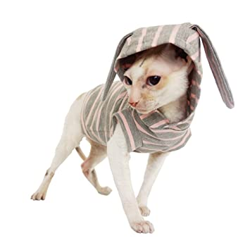 Kotomoda ropa para gatos capucha Conejo de Pascua (XS): Amazon.es: Productos para mascotas