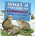 What If There Were No Lemmings?: A Book About the Tundra Ecosystem (Food Chain Reactions)