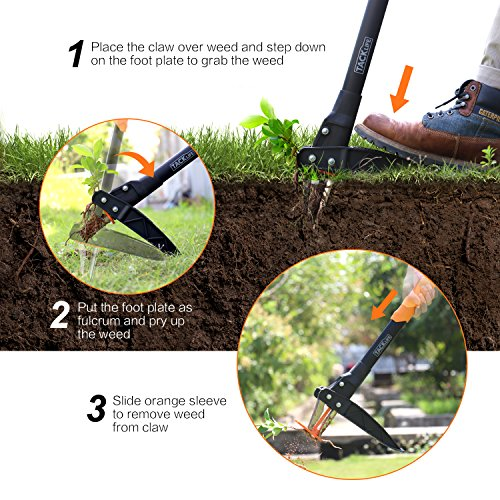 Weeder Tool, Simple to Use Innovative Automatic Spring Device 39-Inch Stand-up Weeder, Heavy Duty Efficient 3-Claw Stainless Steel and High Strength Foot Pedal,Ideal for Permanently Removing Dandelion by TACKLIFE (Image #2)