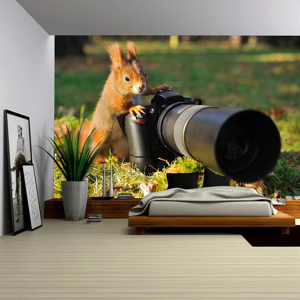 wall26 - Squirrel as a Photographer with Big Professional Camera - Removable Wall Mural | Self-adhesive Large Wallpaper - 100x144 inches