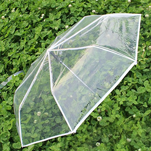 WerFamily transparent Folding Umbrella Reinforced