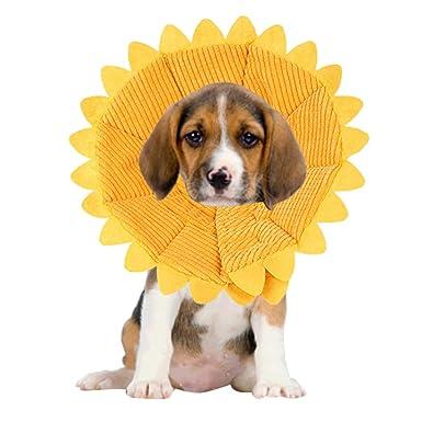 Accesorios Para Mascotas Perros, ♥ ♥ Zolimx Collar Perro Gato Mascota Girasol Perro Cuello Círculo Anti-Mordedura Forma de Anillo de Curación de Heridas: ...