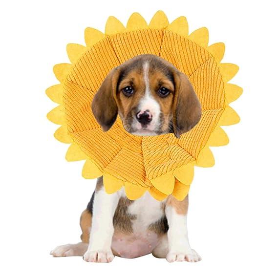 Accesorios Para Mascotas Perros, ♥ ♥ Zolimx Collar Perro ...