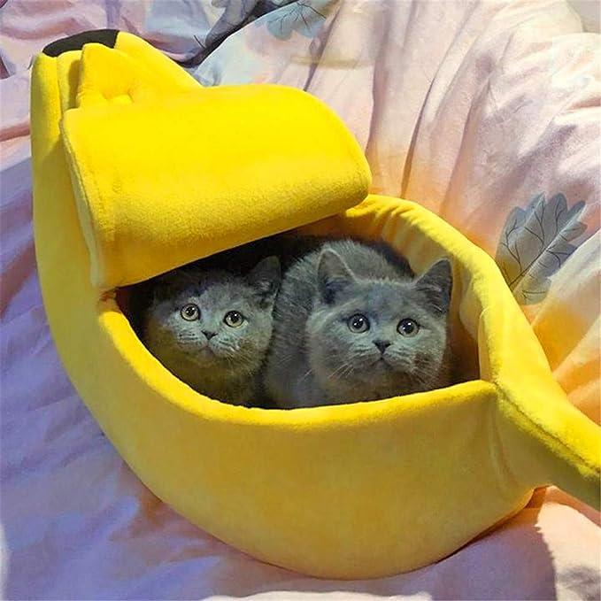 Amazon.com: Cama de plátano para mascotas, perro, gato, cama ...