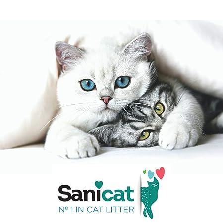 TOLSA Classic Arena para Gatos Absorbente: Amazon.es: Productos para mascotas