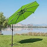 Summer Blast Umbrella Fan The Green Head