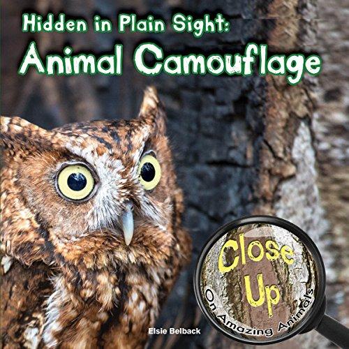 Hidden in Plain Sight: Animal Camouflage (Close-Up on Amazing - Animal Camouflage