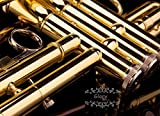 Glory Brass Bb Trumpet with Pro Case +Care