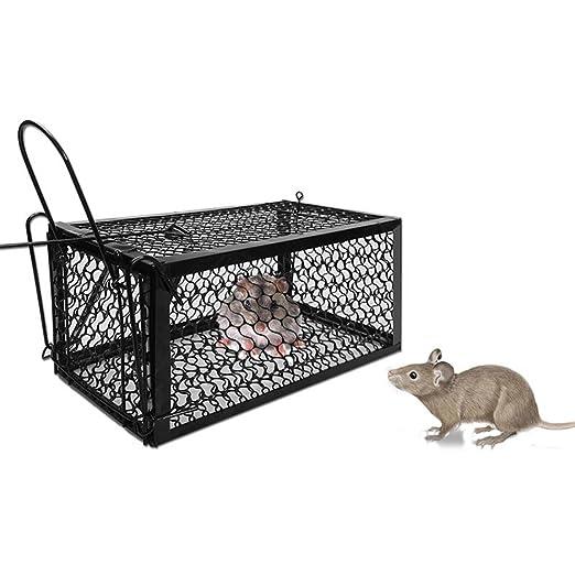 XYLUCKY Trampa De La Jaula De La Rata Humana Para Ratas Ratones ...