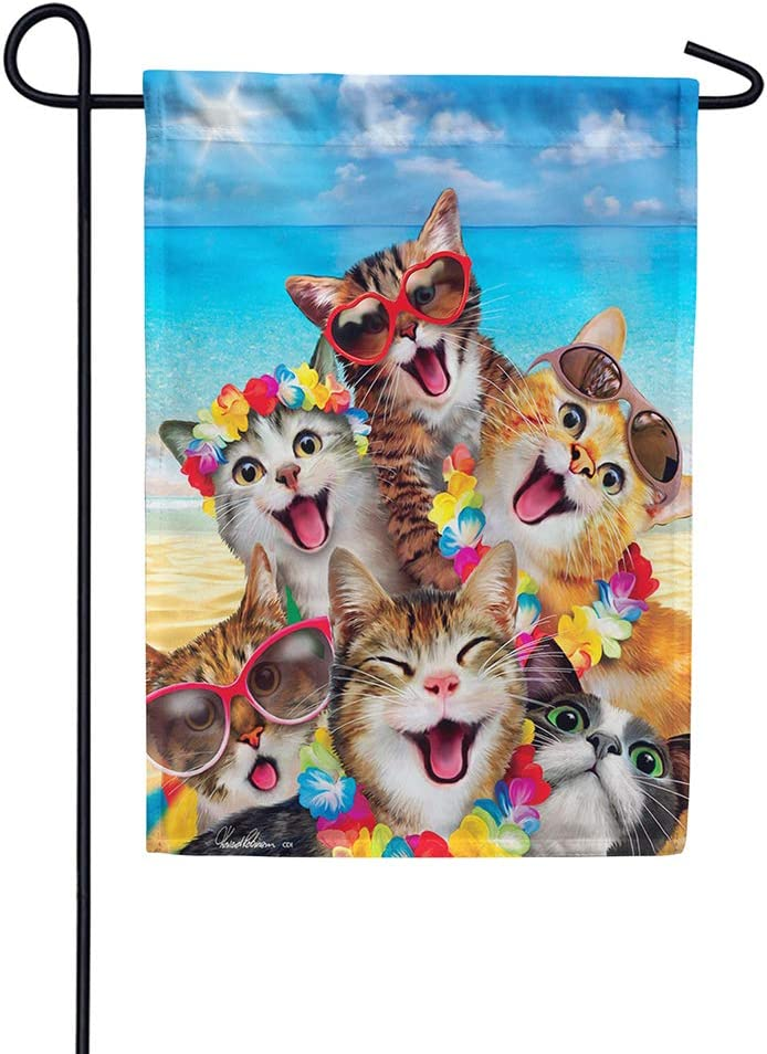 Custom Decor Beach Kittens - Garden Size, 12 Inch X 18 Inch, Decorative Double Sided Licensed, Trademarked and Copyrighted Flag Printed in USA Inc.
