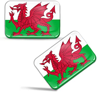 Biomar Labs 2 X Aufkleber 3d Gel Silikon Stickers Wales Drachen Flag Flagge Fahne Auto Motorrad Fahrrad Fenster Tür Pc Handy Tablet Laptop F 94 Auto