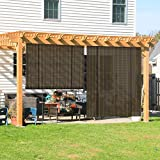 Coarbor Outdoor Roll up Shades Blinds for Porch