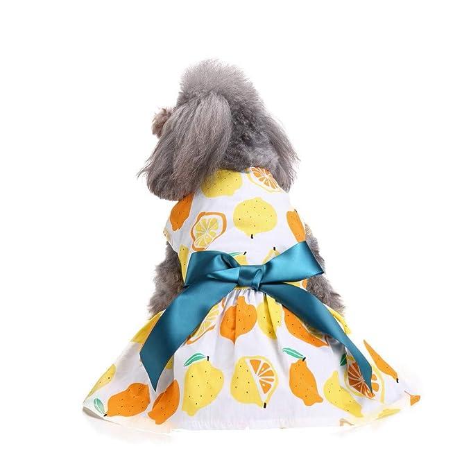 Ropa para Mascotas,Dragon868 Primavera Verano Lindo Frutas Pritned Vestidos para pequeños Perros Medios: Amazon.es: Ropa y accesorios