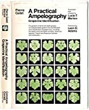 img - for A Practical Ampelography: Grapevine Identification (Comstock Bk) (English and French Edition) book / textbook / text book