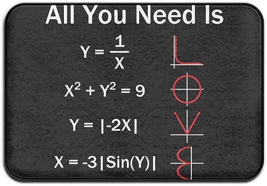 shenhaimojing Todo Lo Que Necesitas Es Amor Matemáticas Felpudo Antideslizante Casa Puerta De Jardín Alfombra Alfombra De Puerta Alfombrillas De Piso 60X40Cm: Amazon.es: Hogar