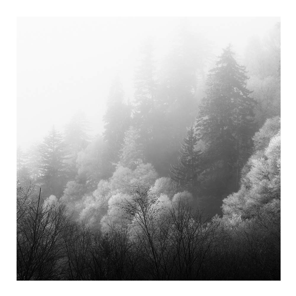 Amazon com winter smoky mountains black and white photography print landscape handmade