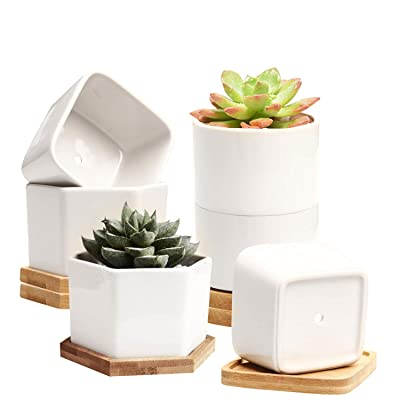 Small Succulent Pots,Ceramic Planter Pots,Mini Flower Pots with Drainage Hole,White Garden Pots with Bamboo Tray,Set of 6: Garden & Outdoor