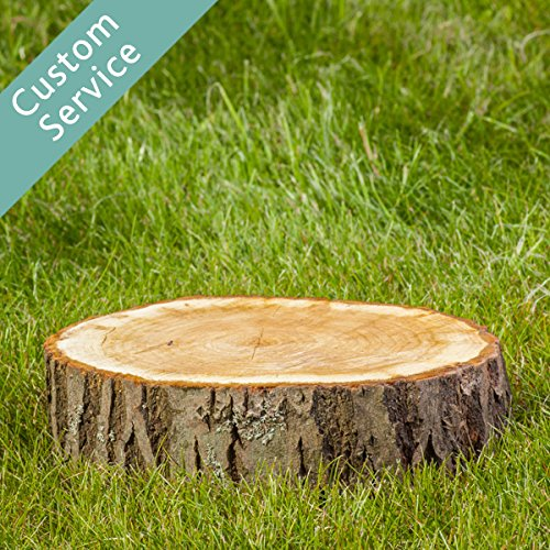 stump-grinding-or-removal-project