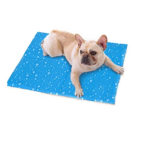 Amazon Com Utopiay Dog Cooling Mat With Water Droplet