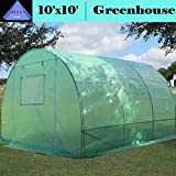 Cheap Greenhouse 10'x10′ (B2) 58 lbs – Green House Walk in Hot House By DELTA Canopies