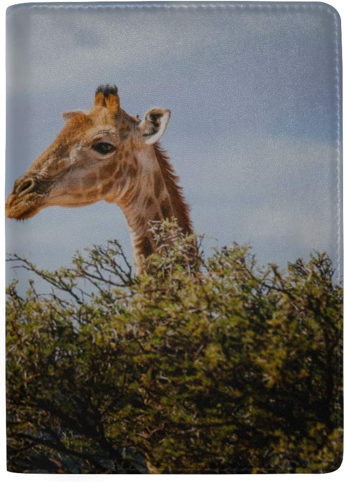 Tall Giraffes Eat Acacia Leaves Blocking Print Passport Holder Cover Case Travel Luggage Passport Wallet Card Holder Made With Leather For Men Women Kids Family