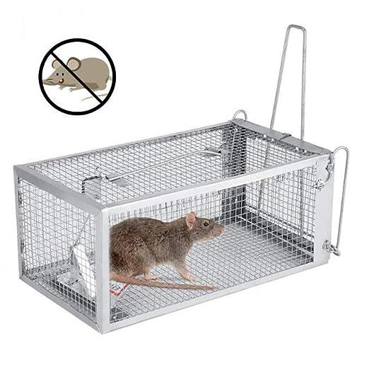 LFDHSF Trampas de Jaula de ratón Humano Trampa de Jaula de ...