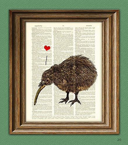 CollageOrama I Love my Kiwi Bird with heart print over a dictionary page New Zealand book art ()