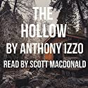 The Hollow Audiobook by Anthony Izzo Narrated by Scott MacDonald