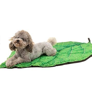 lemonda® mascotas cama de El verde hojas en verano para para perros y gatos Refrescante: Amazon.es: Productos para mascotas