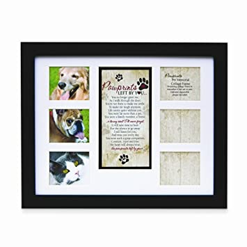 pet memorial collage frame for dog or cat with sympathy pawprints left by youquot