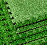 Sorbus Grass Mat Interlocking Floor Tiles
