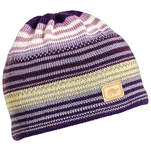 Turtle Fur Aslan 100% Wool Knit Classic Striped Ski Hat Aubergine