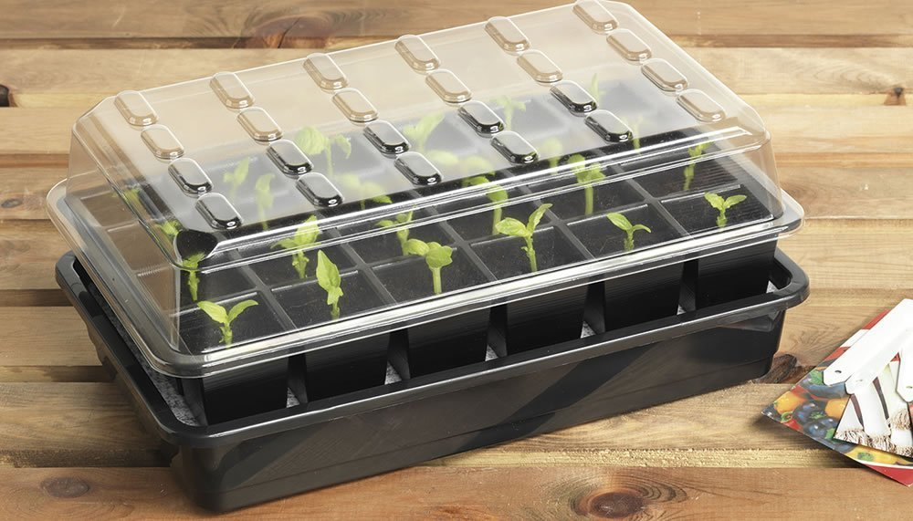 Garland Self watering propagator 24 cell