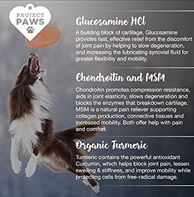 Project Paws Hip and Joint Supplement for Dogs - Dog Glucosamine Chews with MSM, Chondroitin and Organic Turmeric - 120 CT